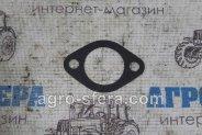 watermarked-IMG_4302